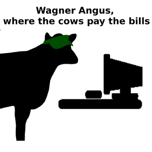 Wagner Angus, where the cows pay the bills